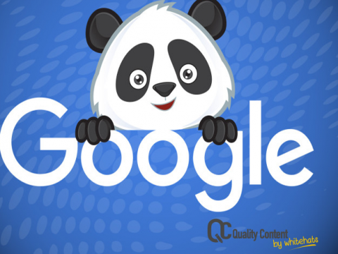 Google Panda Becomes Core and What It Means for Your Website-Website Content Writing Services in Dubai-QualityContent